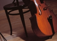 thumbnail-800600-thermofix-wood-pokoj3-1257431541
